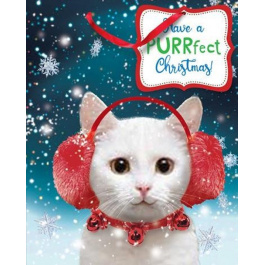 COMING SOON- Extra Large Bag Beary Christmas Cat