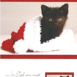 Christmas Afr Card Cat