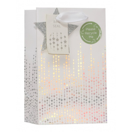 COMING SOON- Small Bag Sparkle and Shine